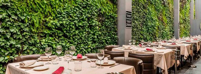 Se puede crear un jardín vertical para restaurantes