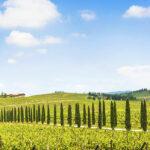 La postal mas bella de Italia la Toscana